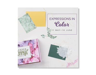 Expressions In Color by Paper Pumpkin